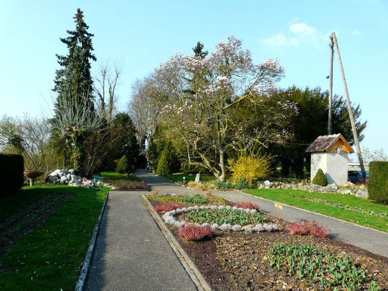 Diebolsheim (11)