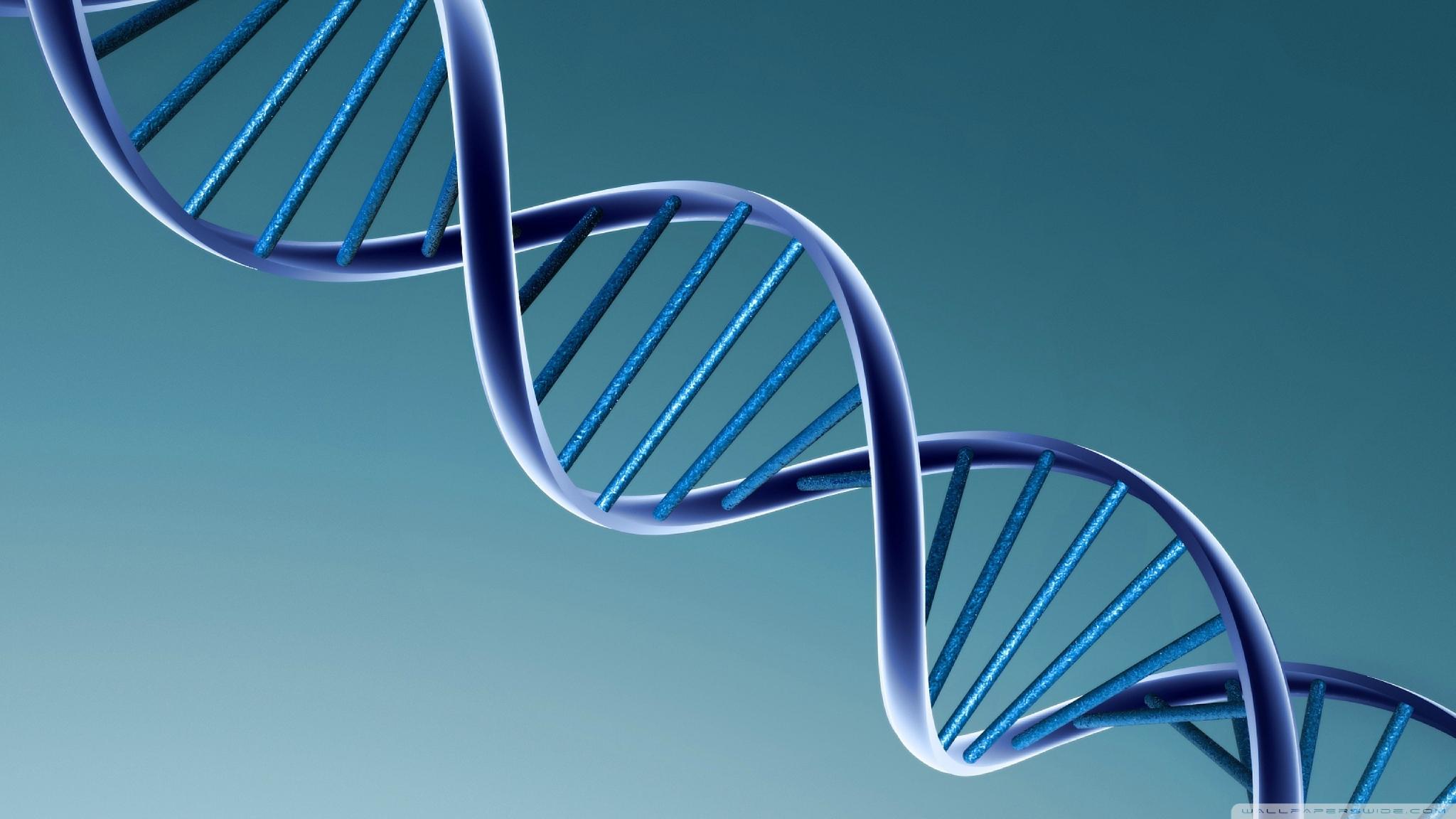 573 - ADN identiques, ça existe !