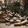 Trésor en pierre