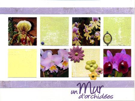 un_mur_d_orchid_es