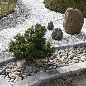 Decoration En Forme Jardin Avec De La Sagine