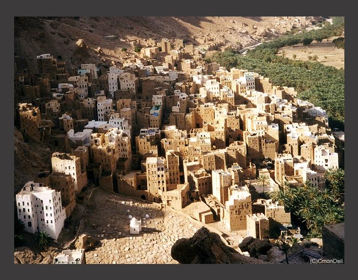 yemen59