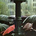 Chantons sous la pluie avec judith, 5e inscrite