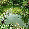 Jardin de la Source 1206168