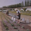 Les jardiniers 1877
