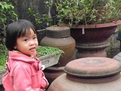 Hanoi-Village Duong Lam 10