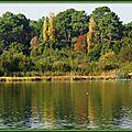 Arbres colorés Lac Soustons