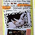 Montpellier avril17-6