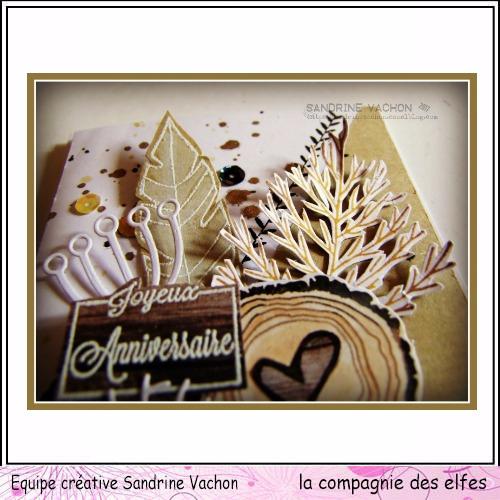Sandrine VACHON dt LA COMPAGNIE DES ELFES (4)