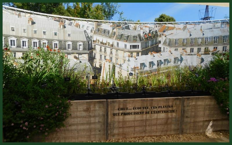 Chaumont-sur-Loire 6-7-1619