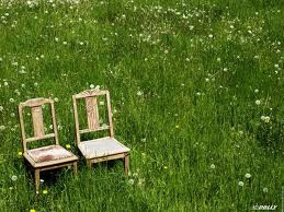 chaises printemps