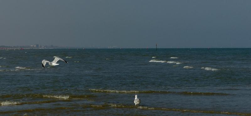 31 aout 2016 la mer (17)