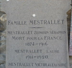 Z_phyrin_Mestrallet