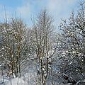 Oh ! la belle neige !