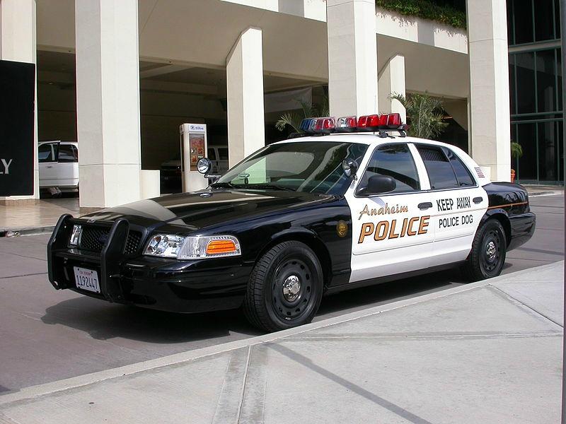 800px-2005_Ford_Crown_Victoria_Anaheim_Police_K-9