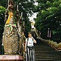 thai024