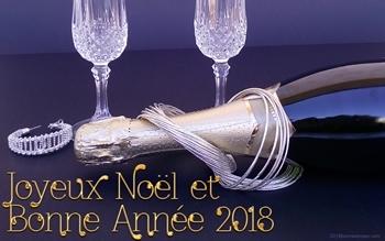 joyeux-noel-2017-et-bonne-annee-2018-avec-champagne_tumb