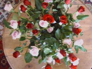 Roses_des_Mazades