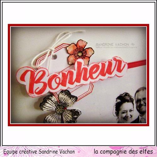 Sandrine VACHON 11 déc dt LCDE (2)