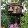 Une maison dans les arbres...the tree house...
