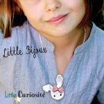 Little Bijoux au Crochet [ Kawaii ] Collier et Broche Lapin, Koala, Panda, Renard + Noeud paillettes - Handmade in France ©Little Curiosité (4)