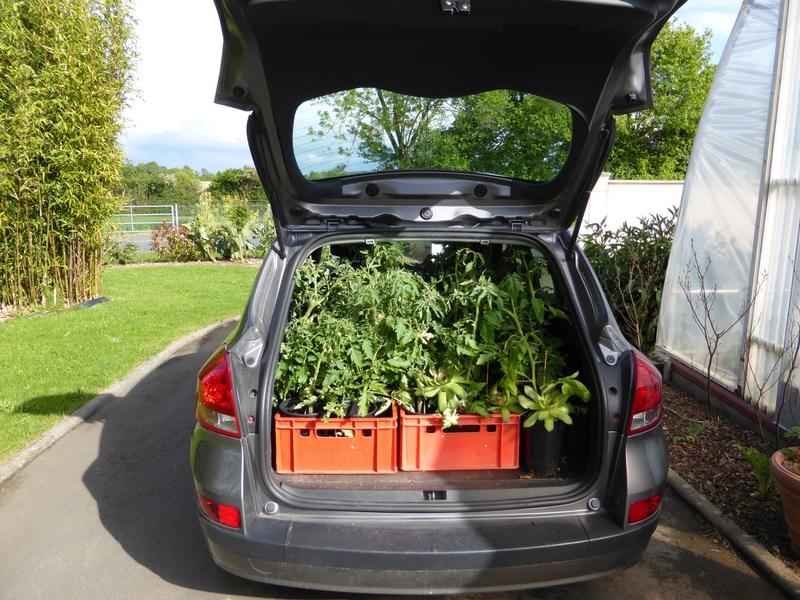 13-tomates en voyage (12)