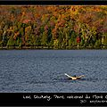 Windows-Live-Writer/Couleurs-dautomne-canadien-suite_13F87/IMG_9044-naturelimages