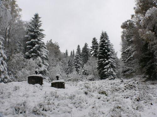 2008 10 30 Au pied du Pic du Lizieux sous la neige