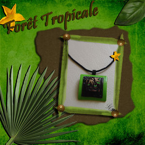 For_t_tropicale