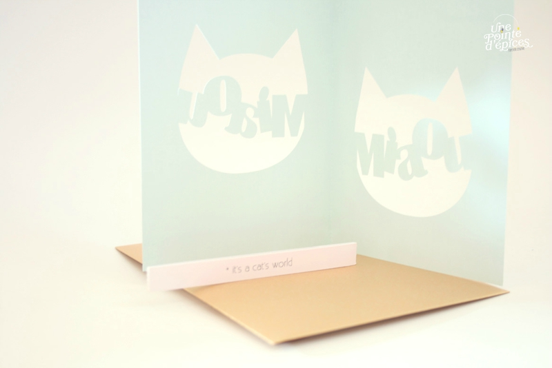 carte chat 5