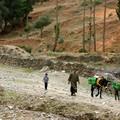 Trek au Maroc (23)