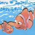 Carte Nemo