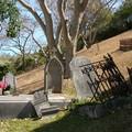 Des fleurs pour les morts (01/11/2006)