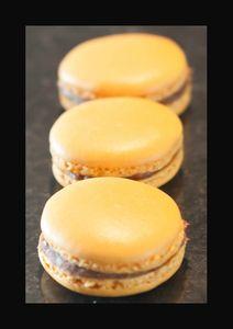 macarons choco passion