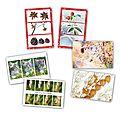 Nouvelle série de cartes postales ....