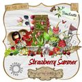 Kit strawberry summer de boudinette