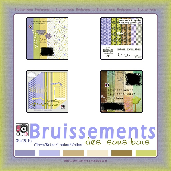 bruiss_sous_bois_prev
