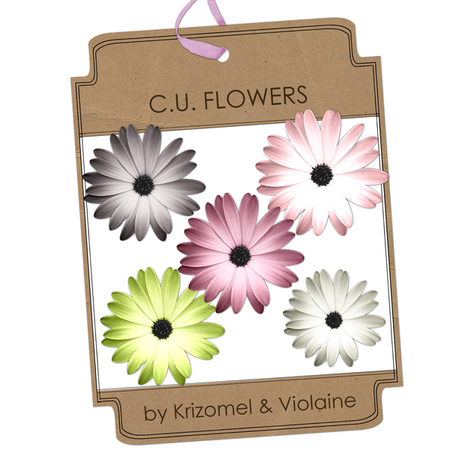 preview_CA_flowers_by_Krizomel___Violaine