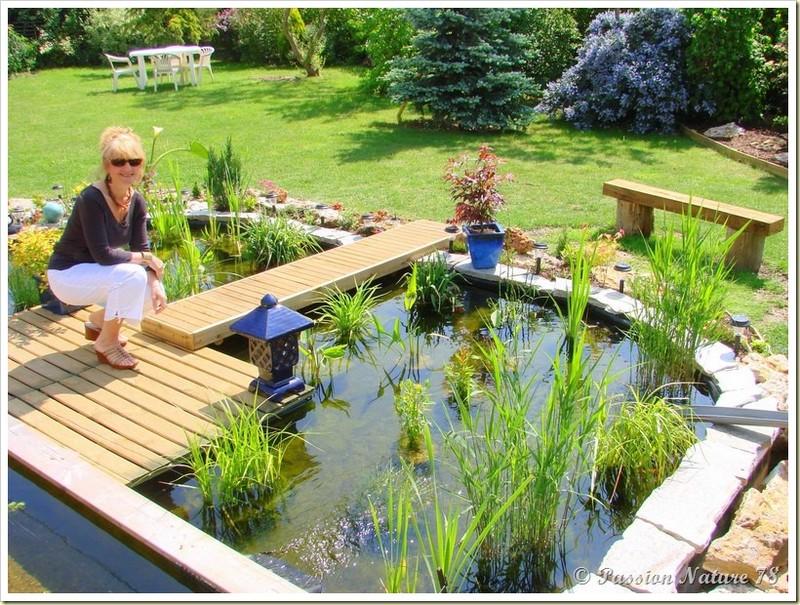 Le bassin...Mon petit coin de paradis (30)