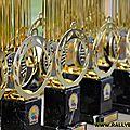 Remise des prix comité champagne-ardenne 2015
