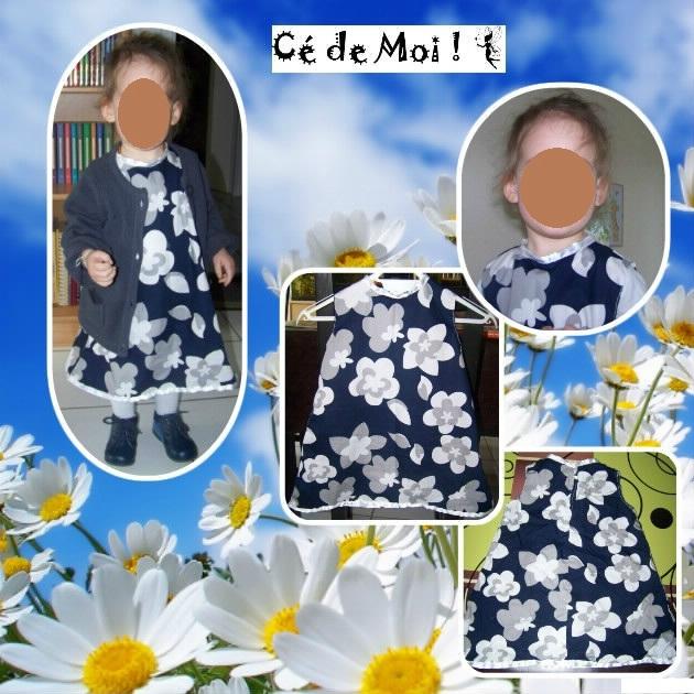 12-03-05 robe trapèze pour Julie