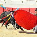 Béziers, une opportunité pour les toreros français