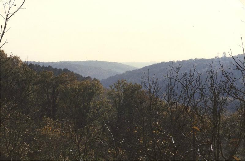 le vallon du Foncrose vu de l'Allée