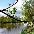 saumur avril 2014 080