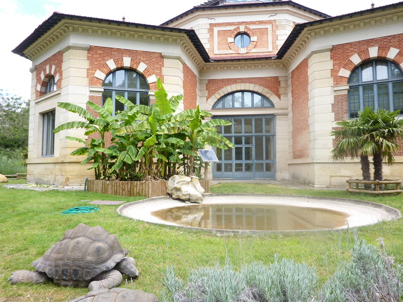 La m nagerie du jardin des plantes paris poetic things for Animalerie du jardin des plantes
