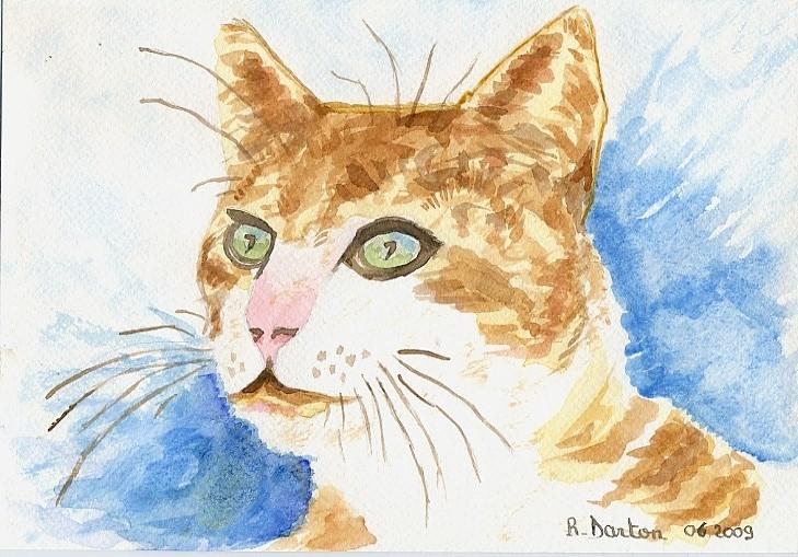 11- Le chat
