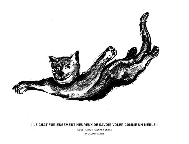 le chat furieusement heureux de savoir voler comme un merle