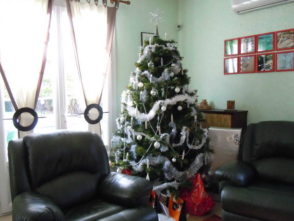 2010-12-24, sapin