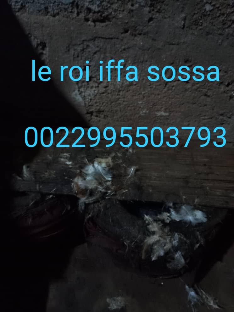 prière puissant de la chance appel et whatsapp 0022995503793