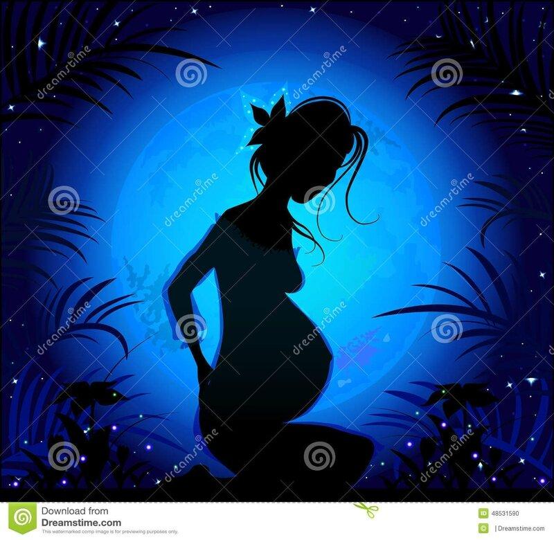 silhouette-d-une-belle-femme-enceinte-48531590